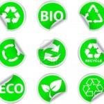 Milieu, Sedum, Groendaken, Kantoorbeplanting