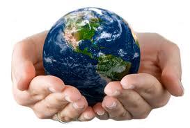 Duurzaamheid Milieu Kantoorbeplanting
