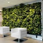 natuurlijk_plantenwand